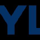 Hyundai Logo.