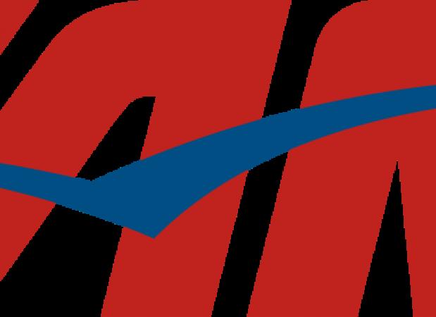 Logo da Tam, Logotipo TAM.