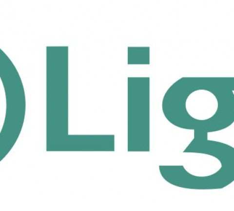 light logo, light energia logo.
