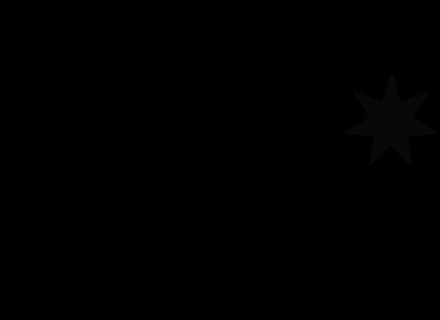 DC shoes logo.