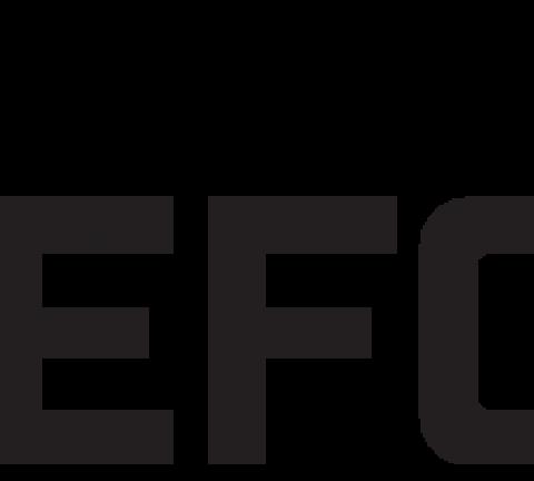 GeFORCE logo.
