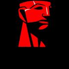 Kingston Logo.