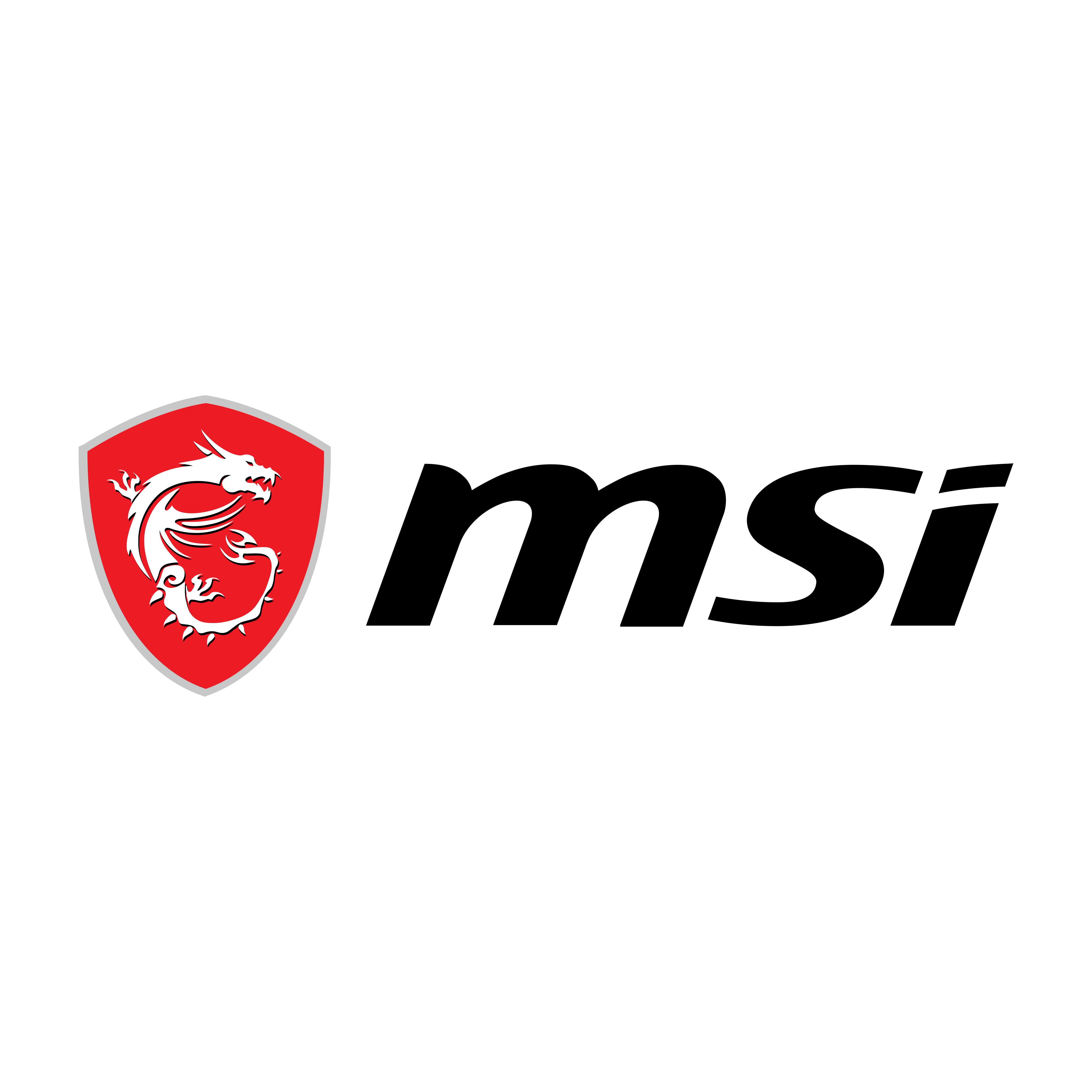 MSI Logo PNG.