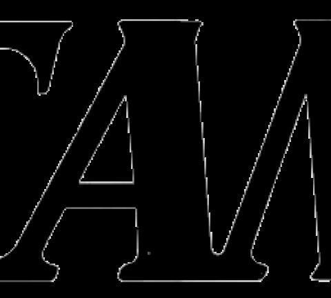 Tama Logo drum.