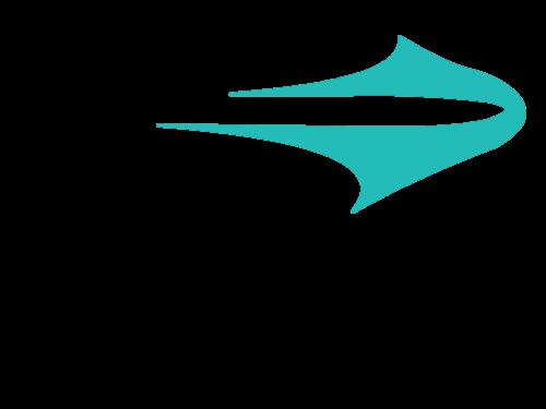 Topper Logo.