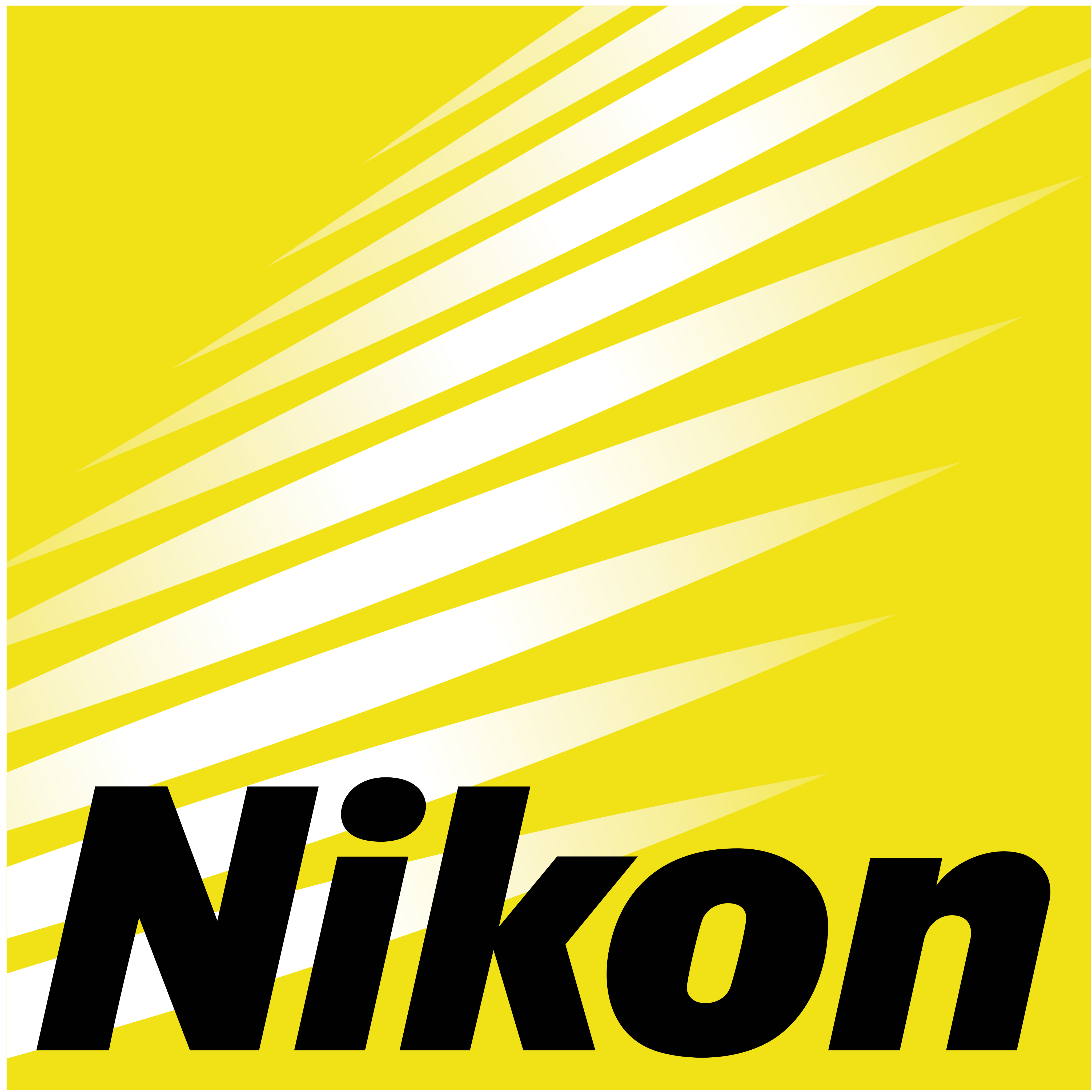 Nikon logo 8 - Nikon Logo