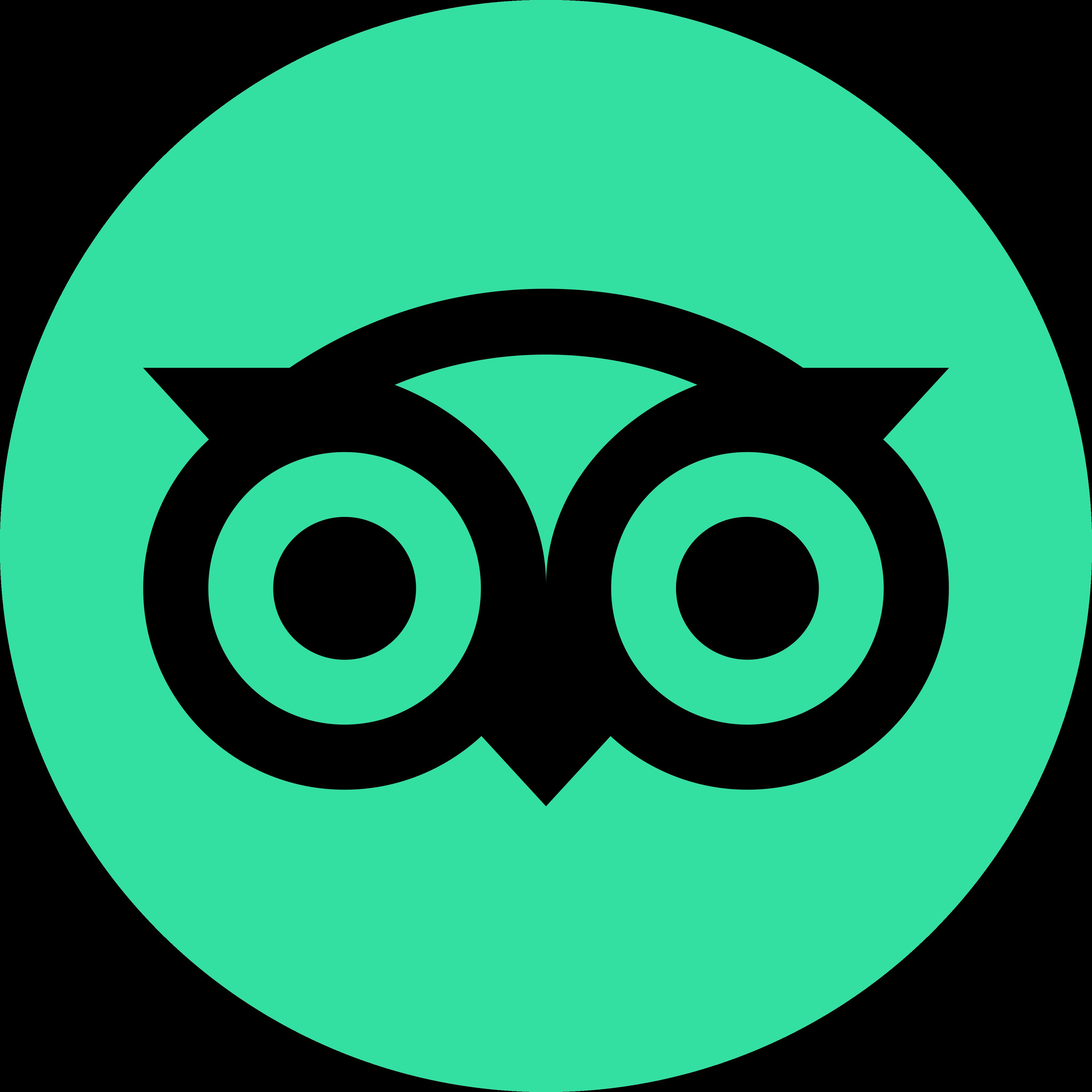 tripadvisor logo 5 - TripAdvisor Logo