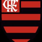 Flamengo Logo, Escudo novo.