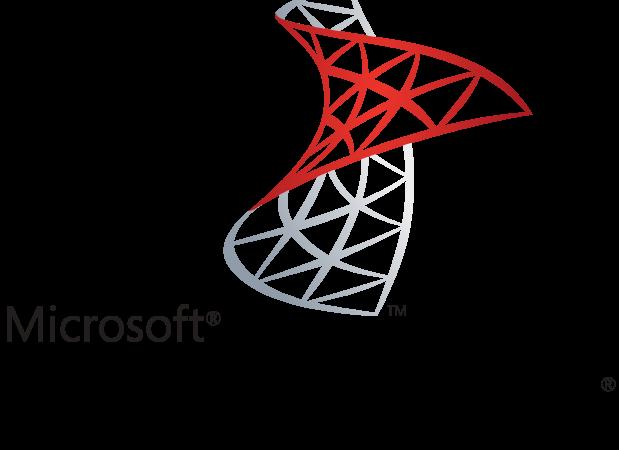 Microsoft SQL Server logo.