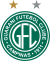 Guarani fc logo esudo 14 - Guarani FC Logo - Guarani FC Escudo