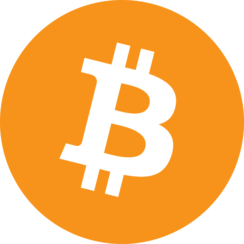 bitcoin logo 3 1 - Bitcoin Logo