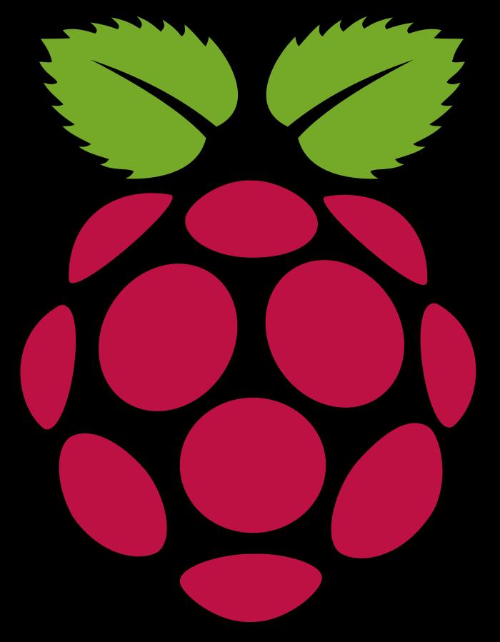 raspberry pi logo.