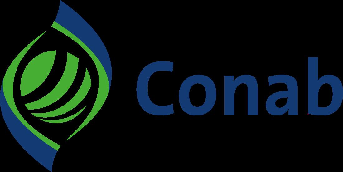 conab logo 6 - Conab Logo - Companhia Nacional de Abastecimento Logo