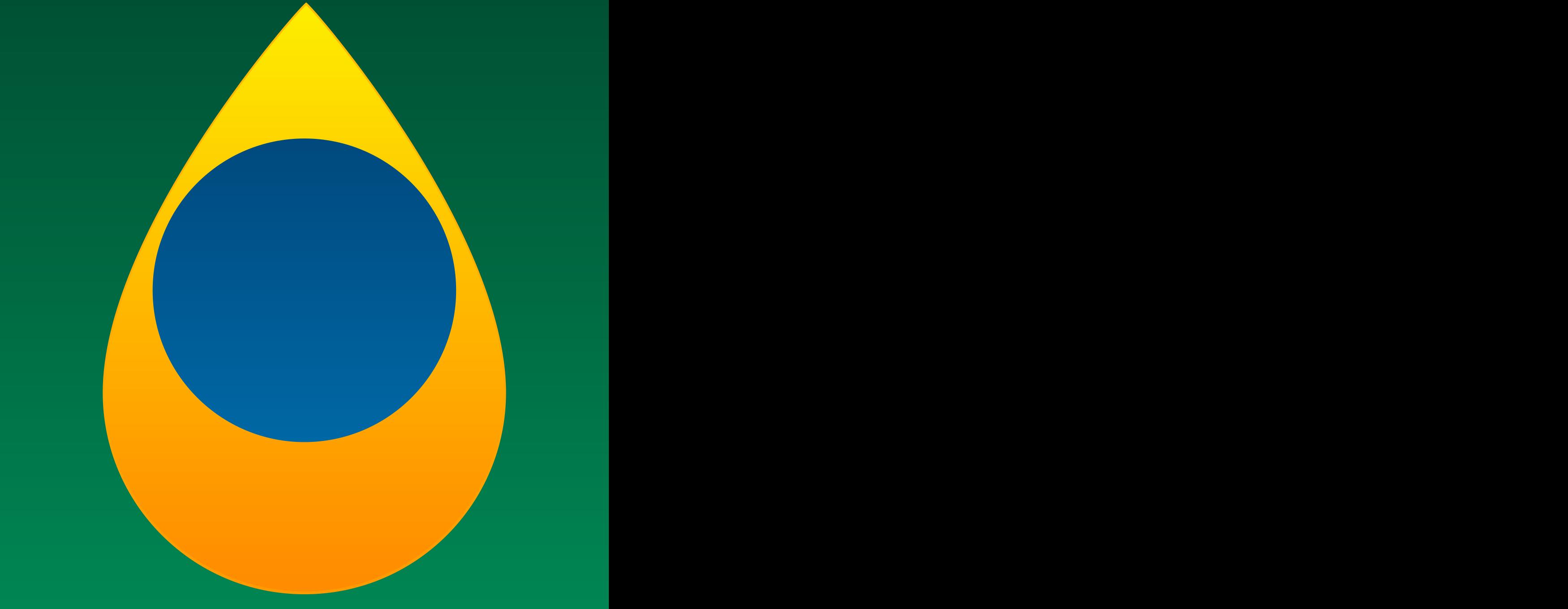 anp logo.