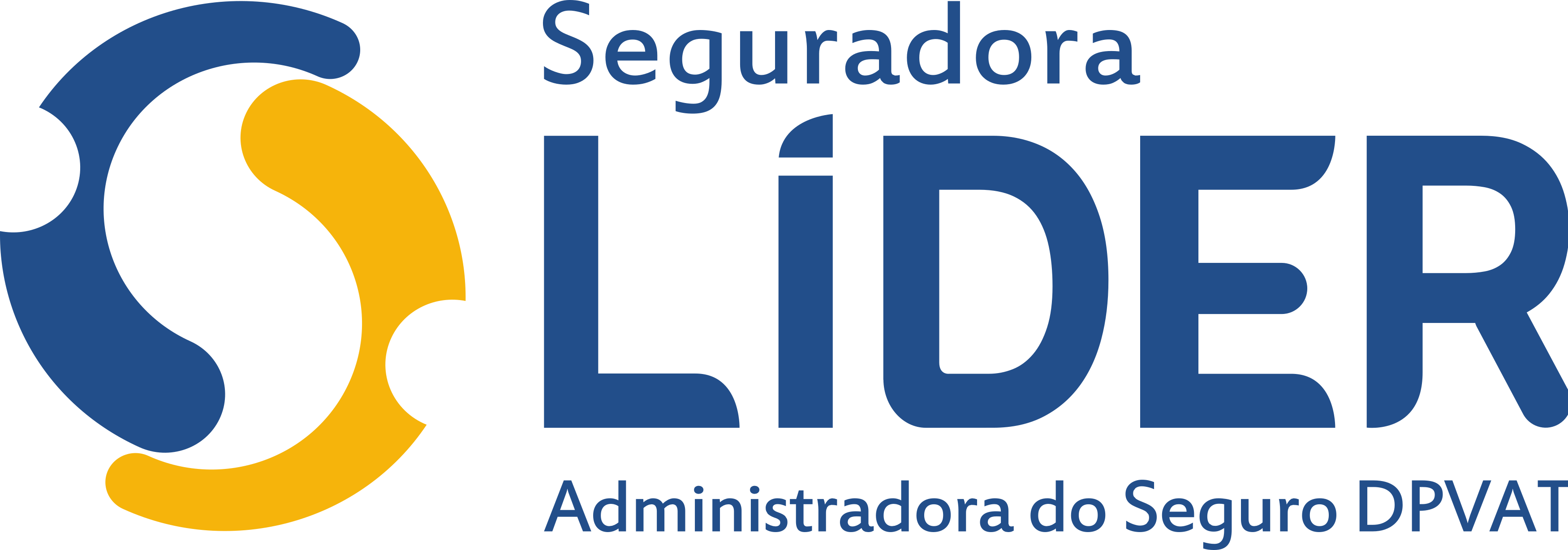 Seguradora Lider DPVAT Logo.