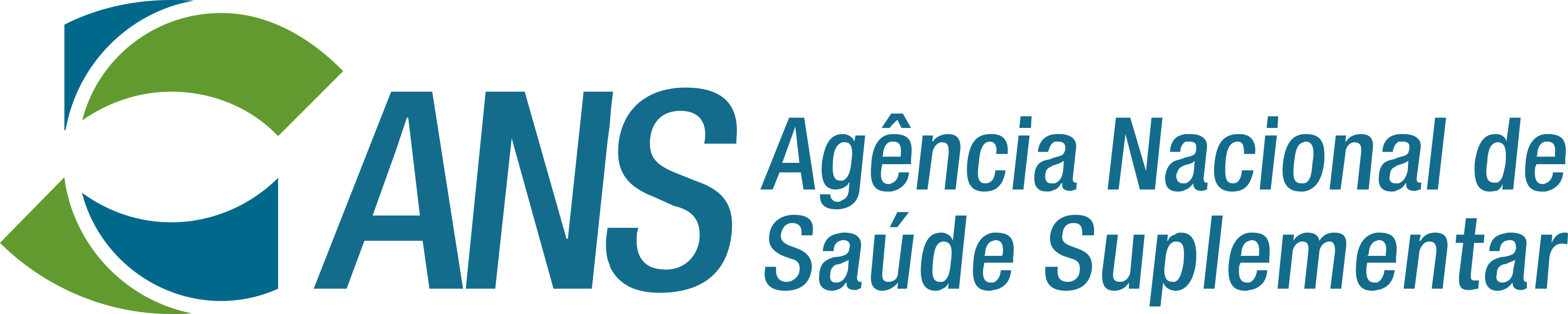 ANS Logo.