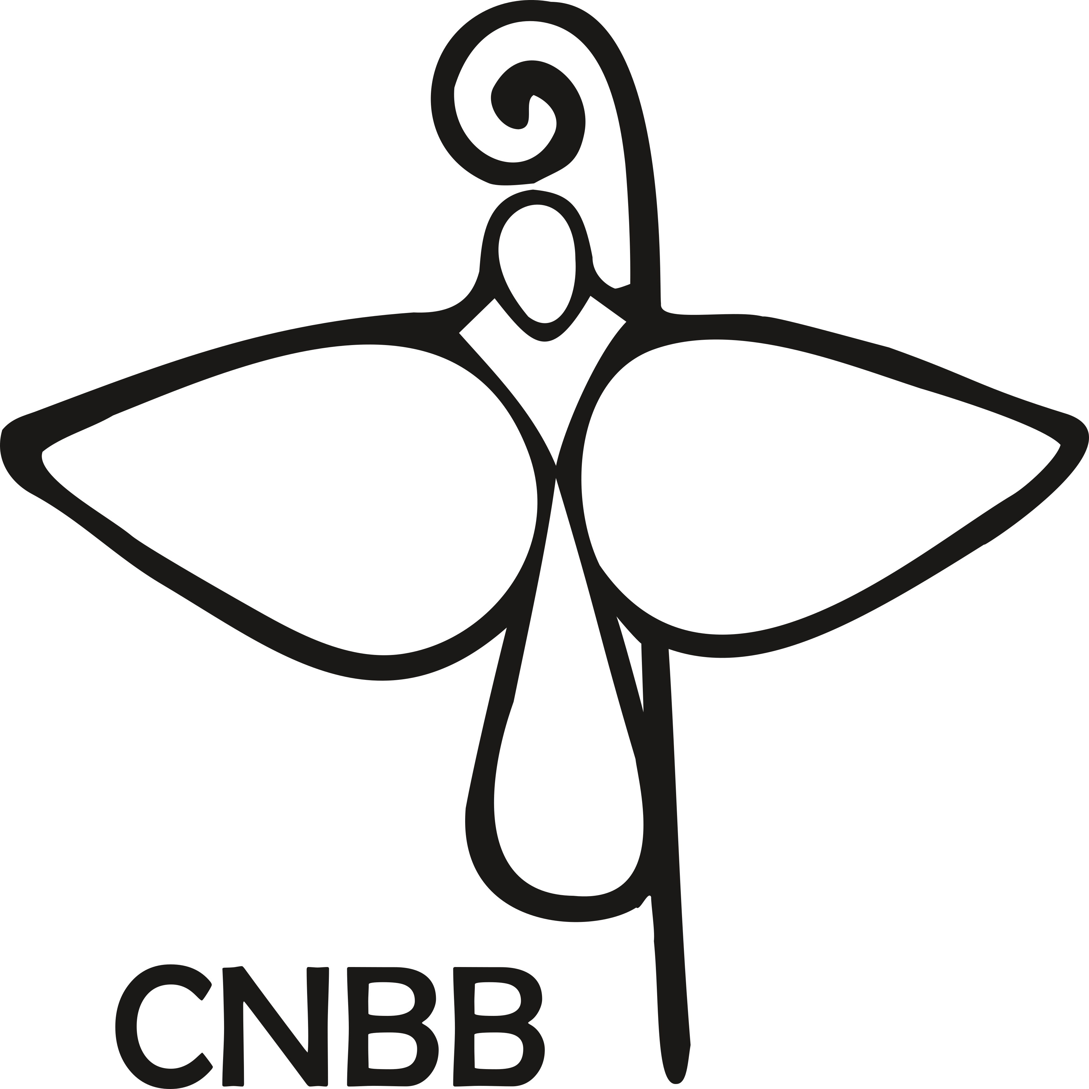 CNBB Logo.