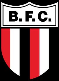 Botafogo SP logo escudo.