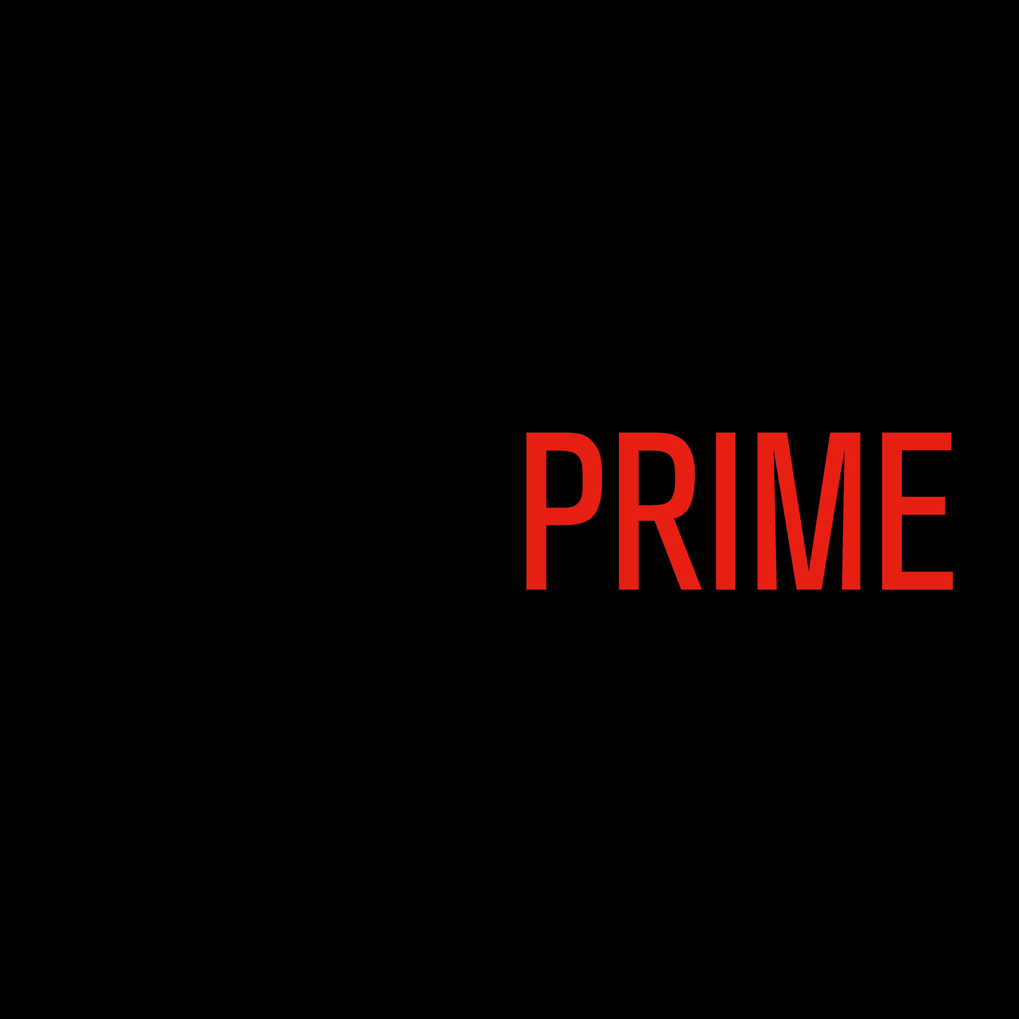 max prime logo 0 - MaxPrime Logo
