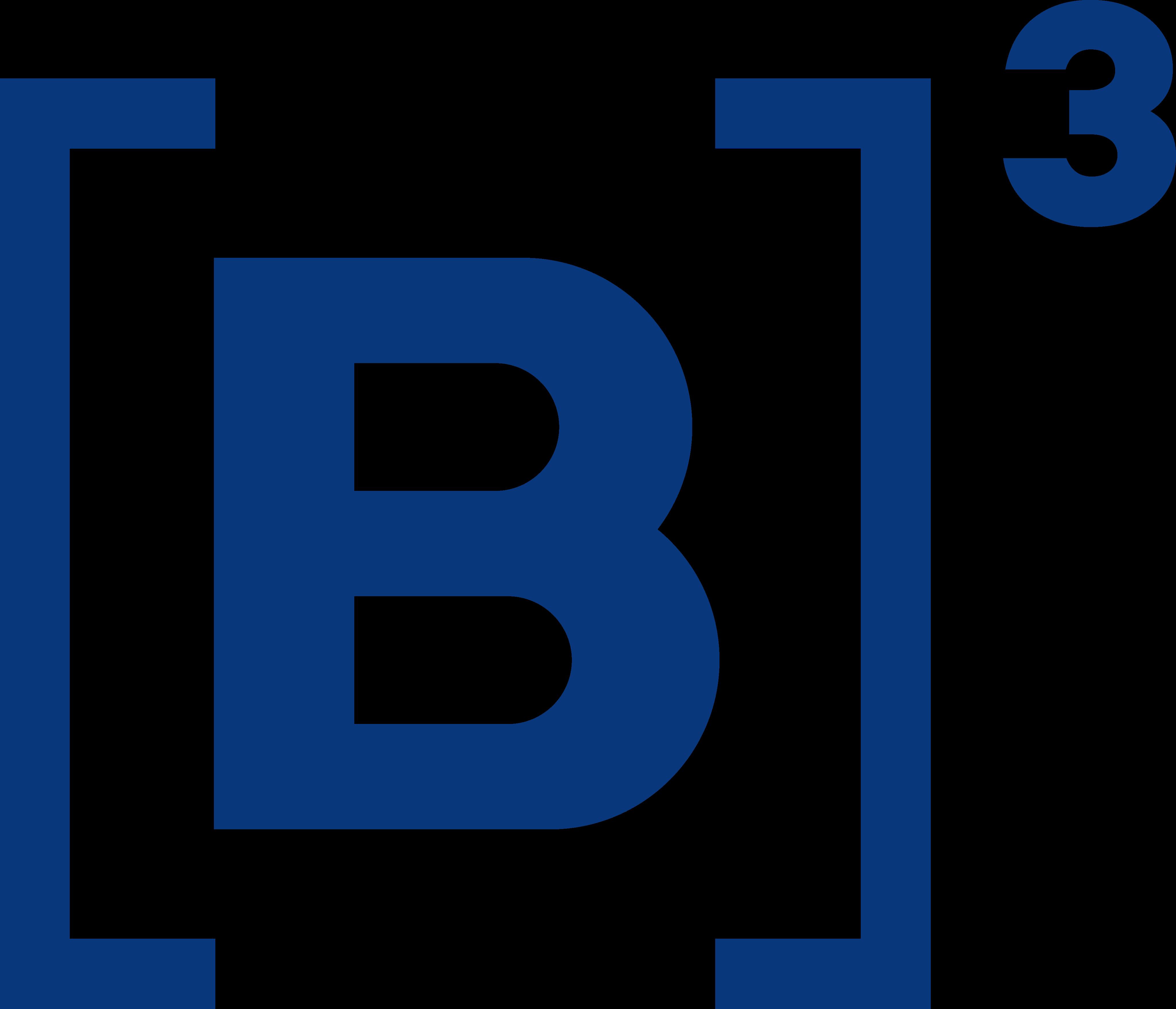 b3 logo.
