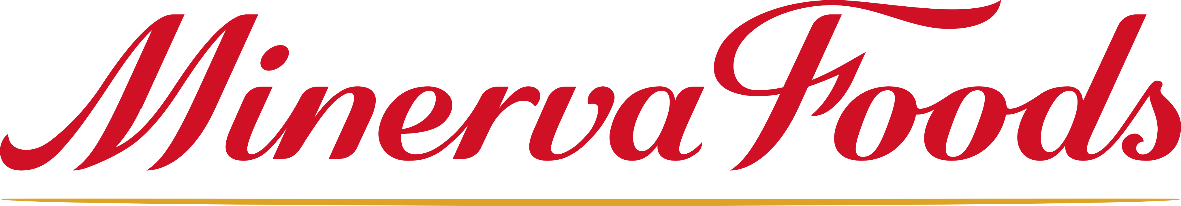 minerva foods logo - Minerva Foods Logo