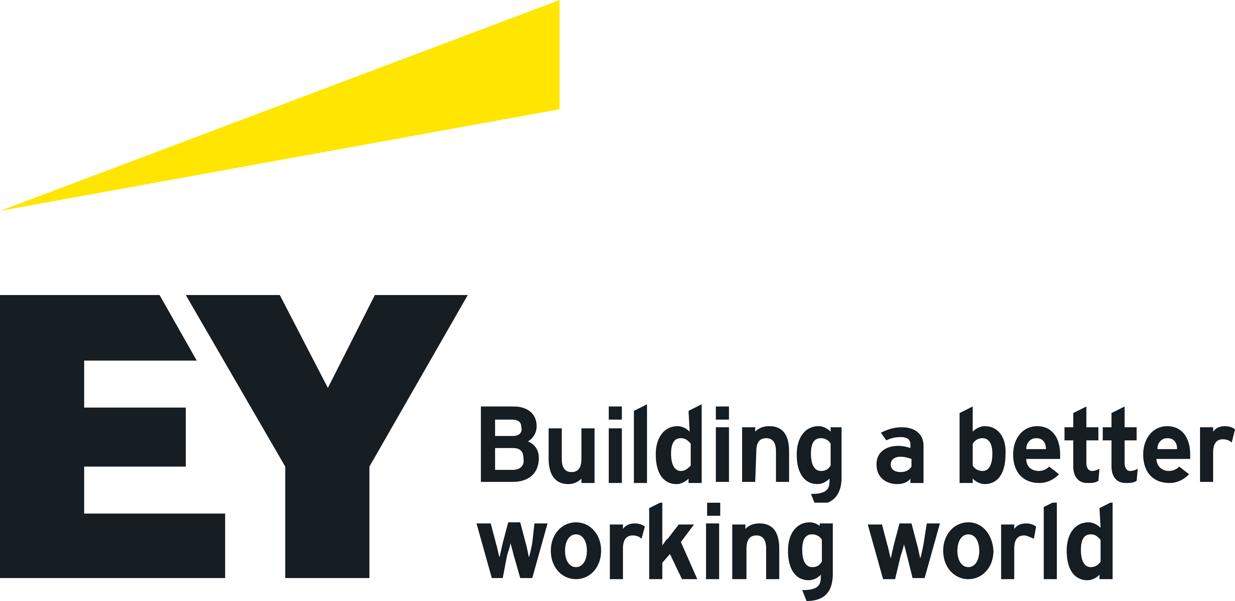 Ernst & Young Logo.