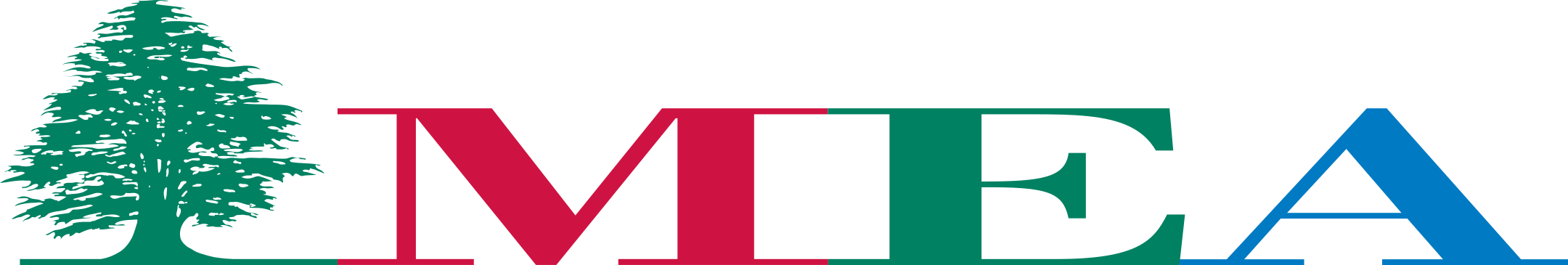 middle east airlines 1 - Middle East Airlines Logo