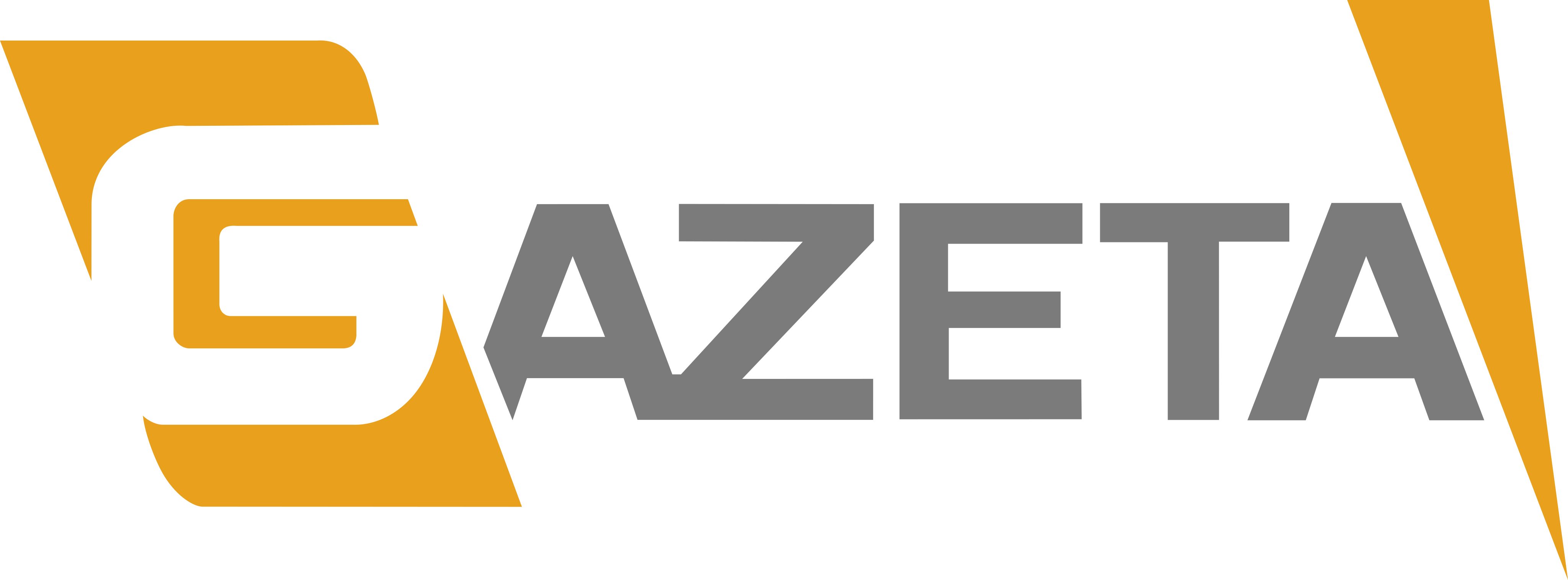 tv gazeta logo - TV Gazeta Logo
