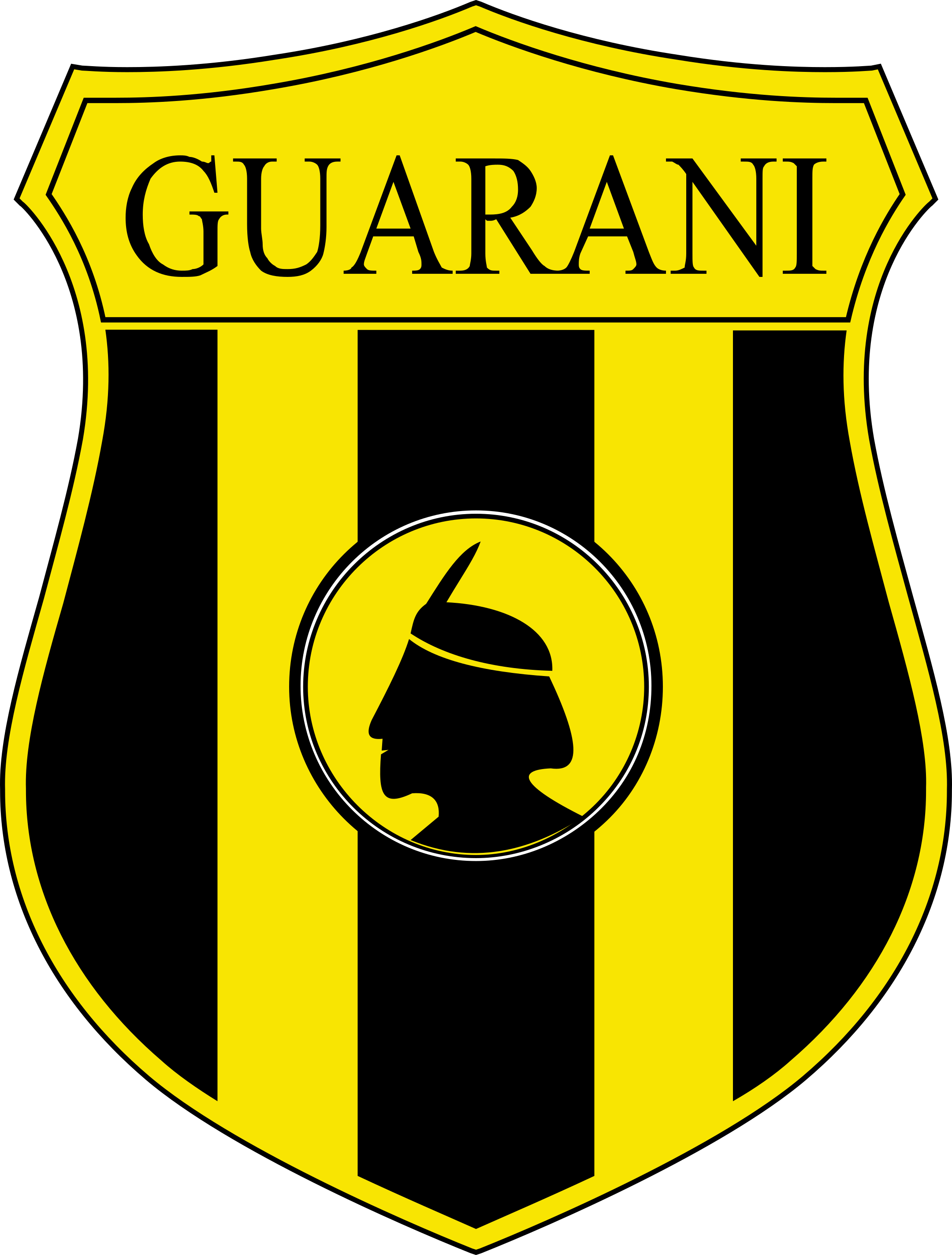 club guarani logo 1 - Club Guaraní Logo – Escudo