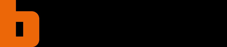 bticino logo 2 - Bticino Logo