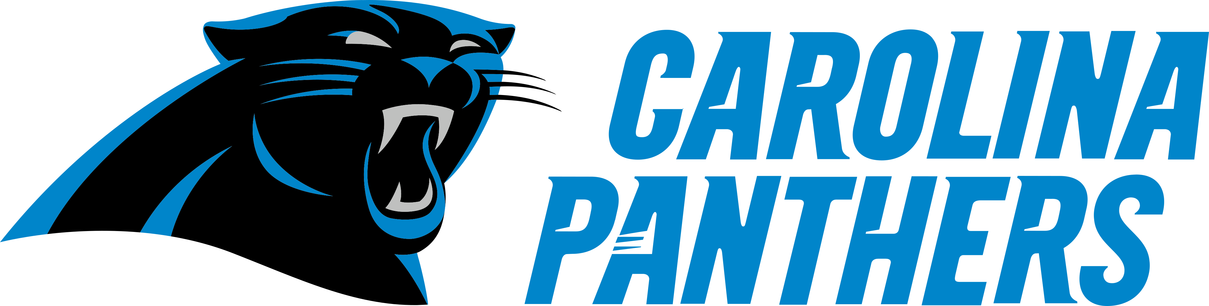 Carolina Panthers Logo.