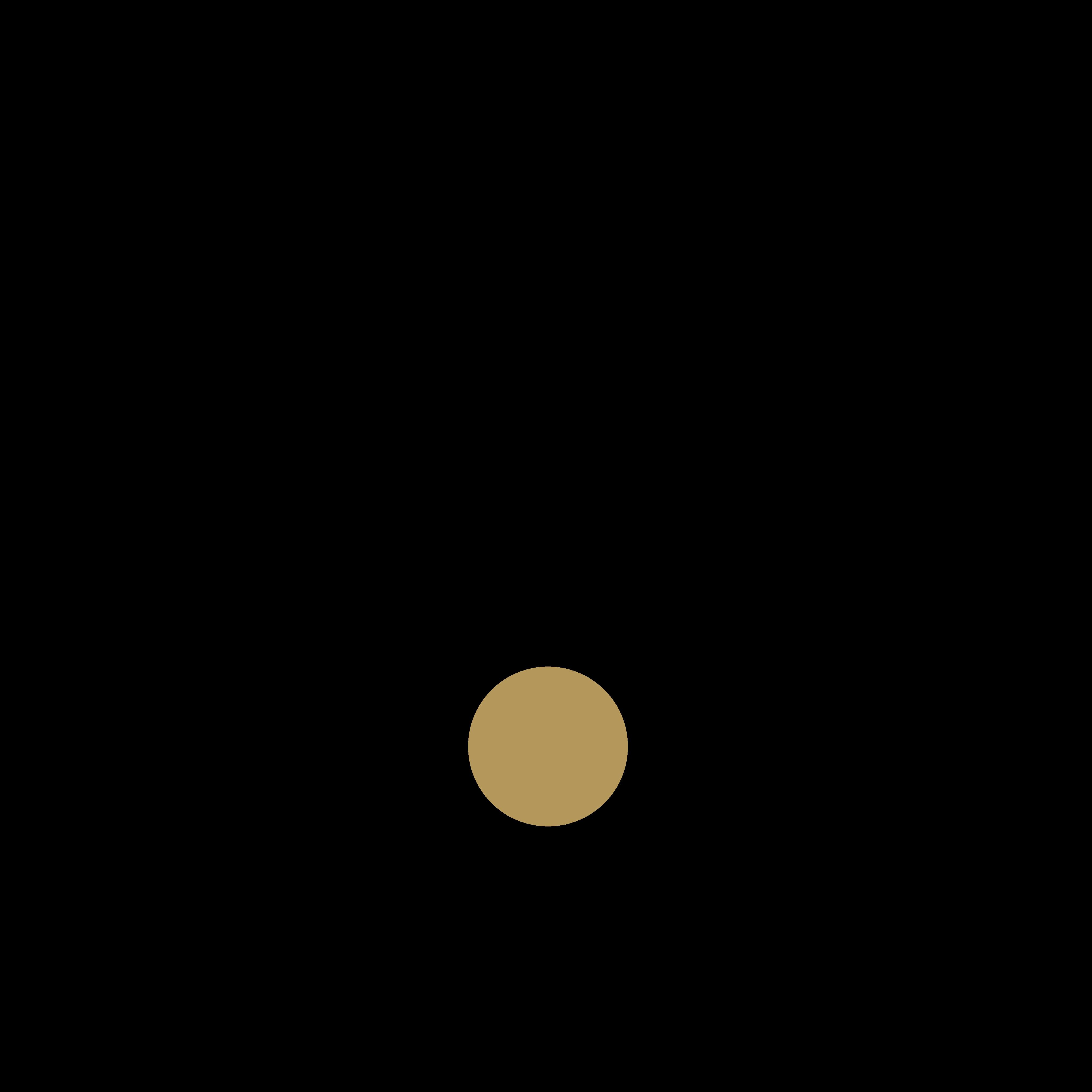 rode logo 0 - Røde Microphones Logo