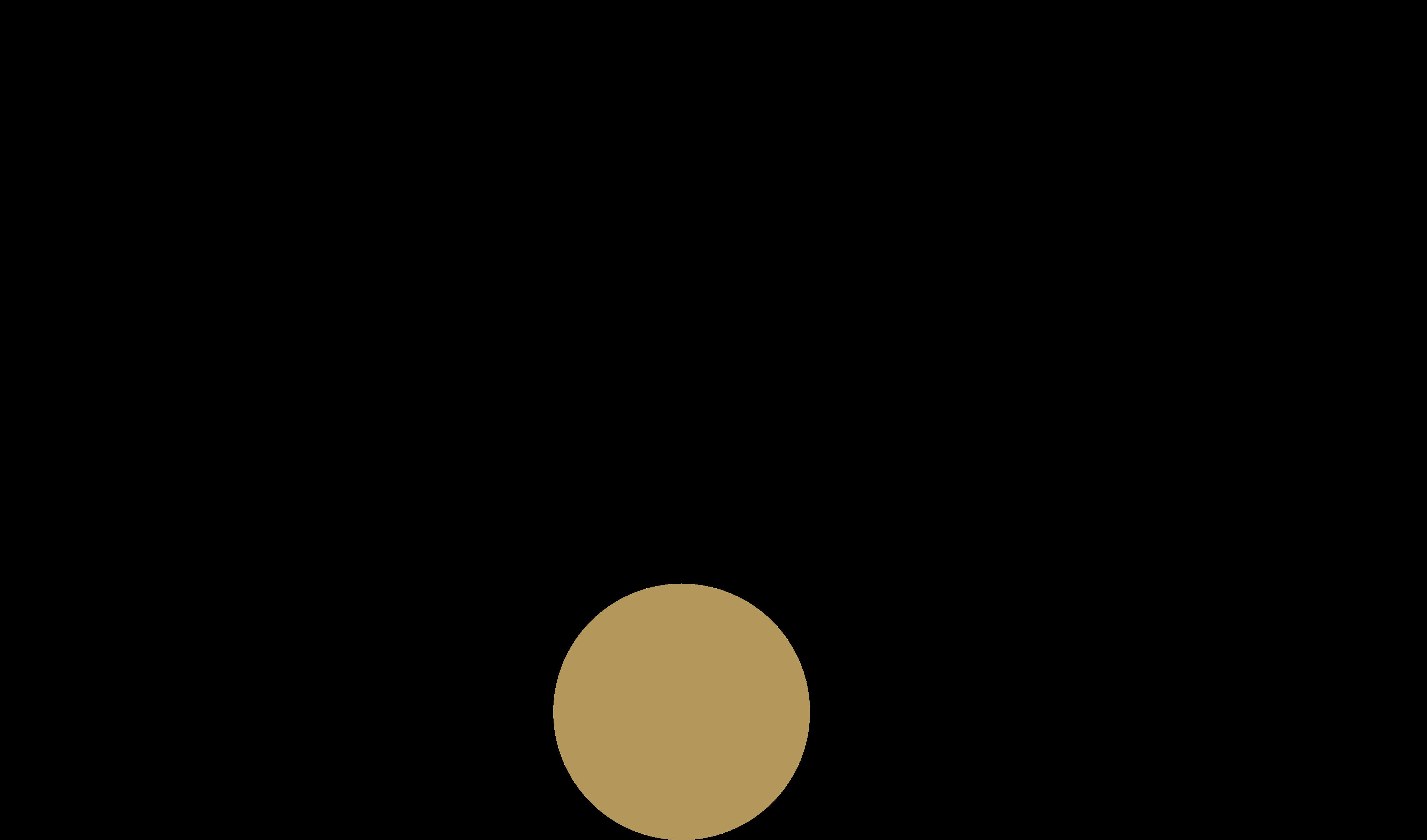 Røde Microphones Logo.