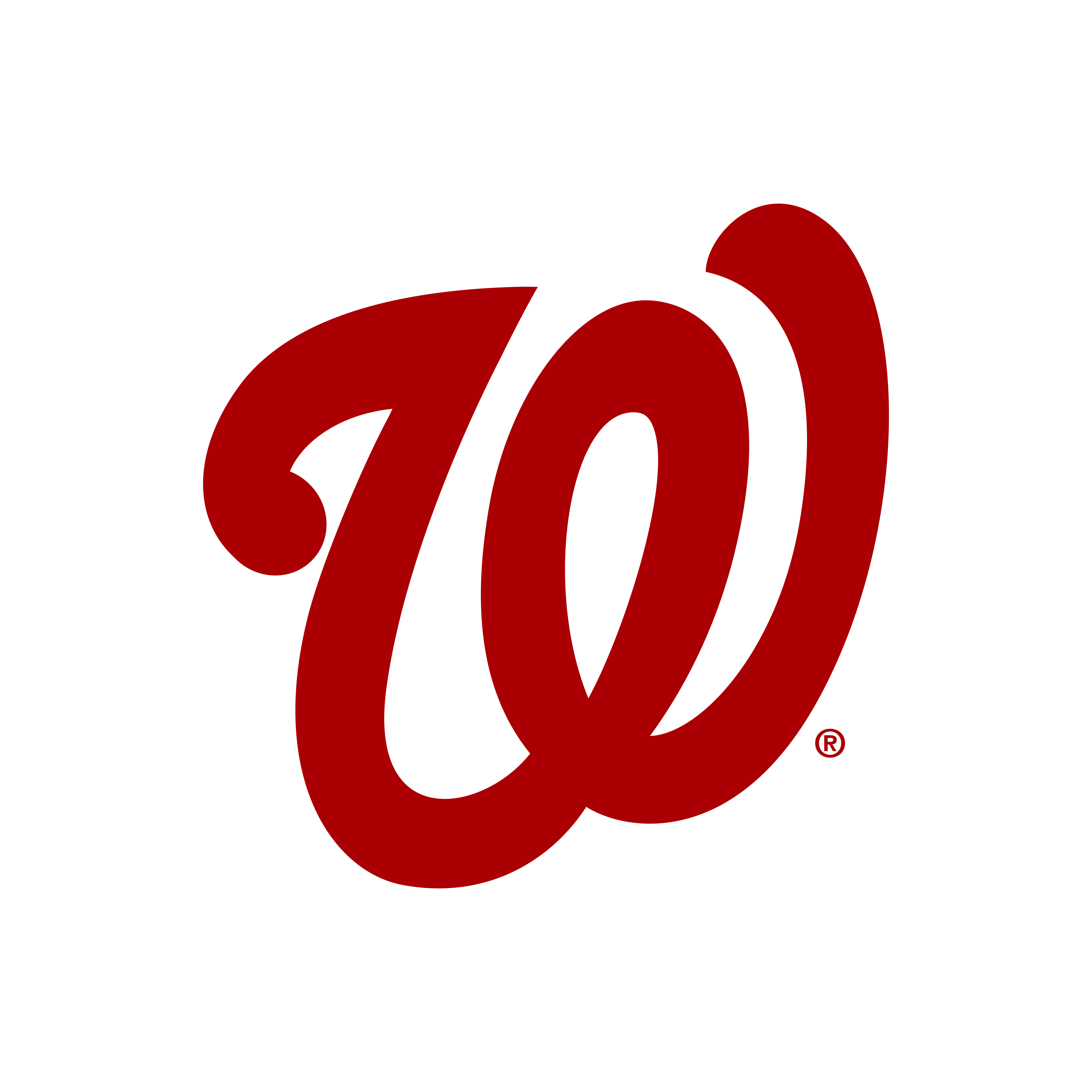 washington nationals logo 0 - Washington Nationals Logo