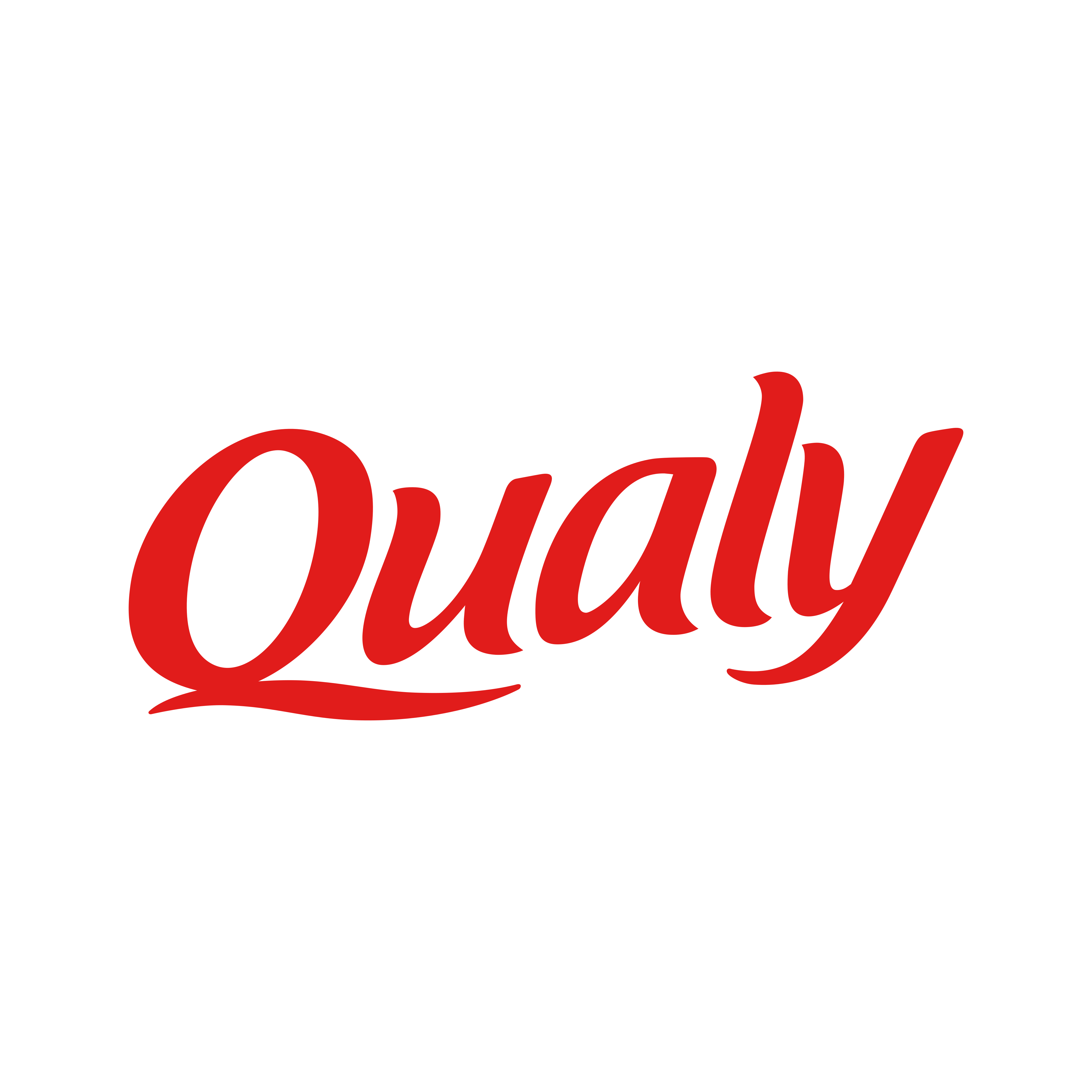 qualy logo 0 - Qualy Logo