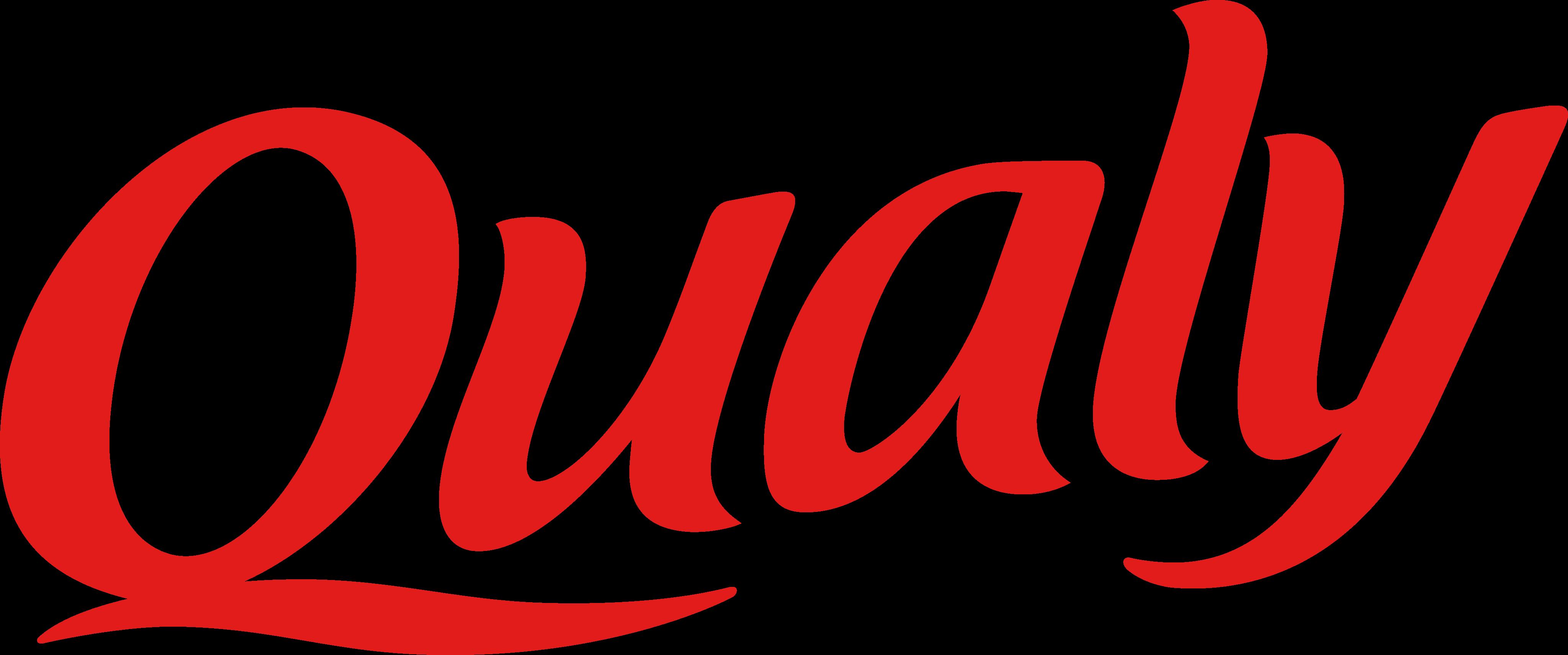 Qualy Logo.
