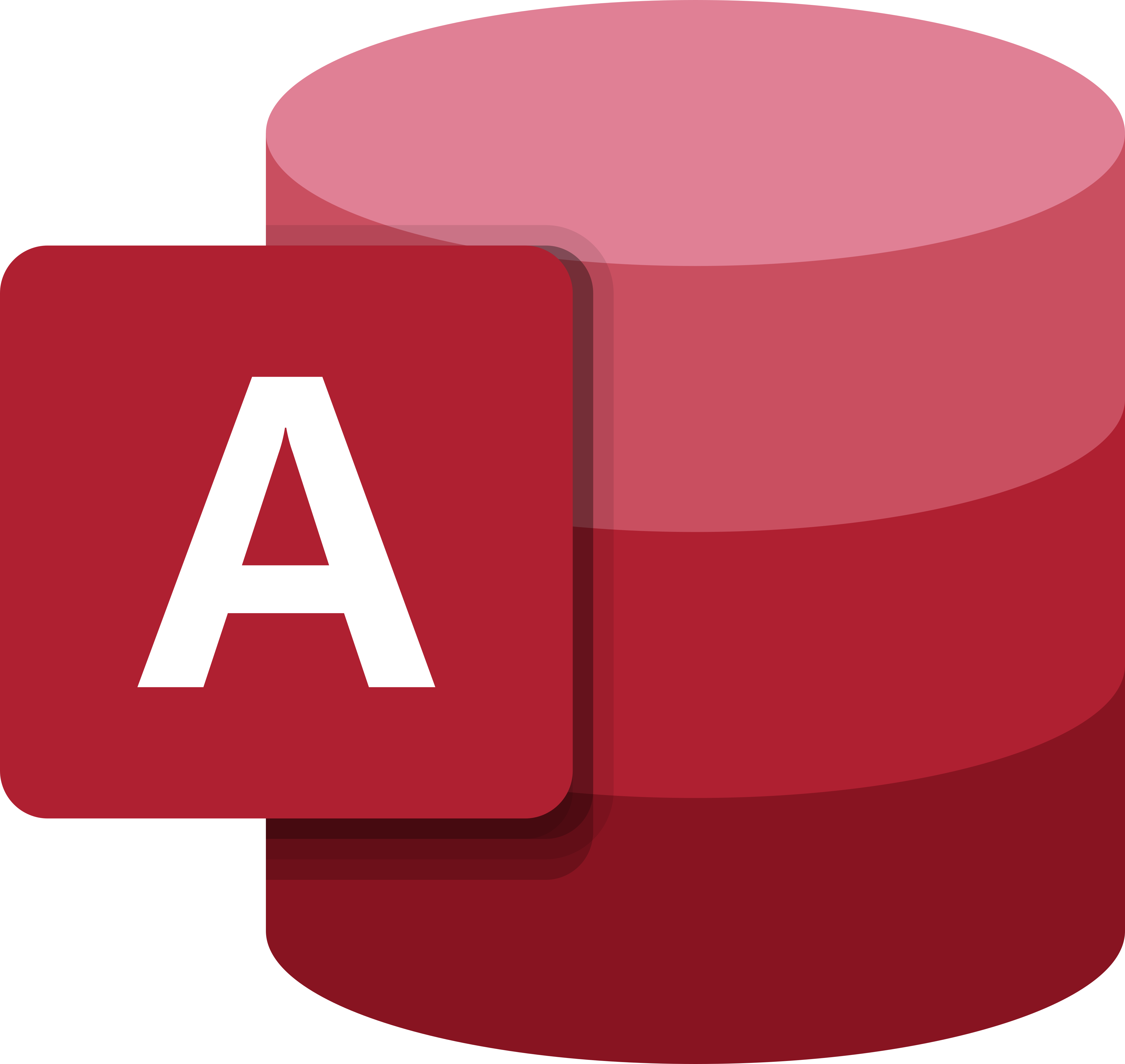 Microsoft Access Logo.